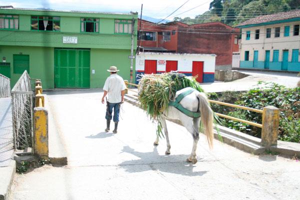 El Olaya Herrera requiere de obras