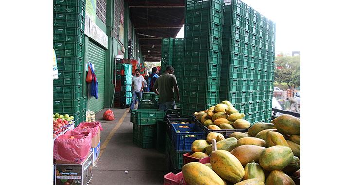 Hay alimentos en la central mayorista de Armenia