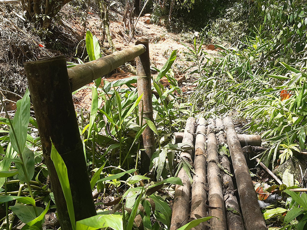 En Pijao, ruta a Rincón Santo, abandonada