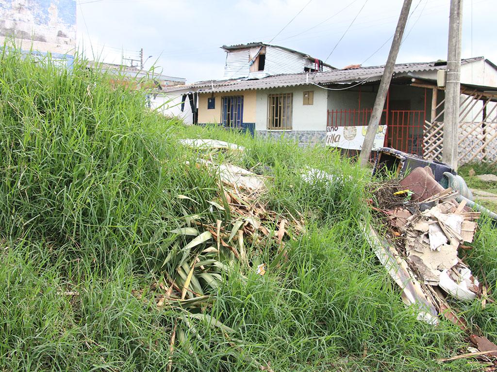 En Circasia la maleza crece sin control