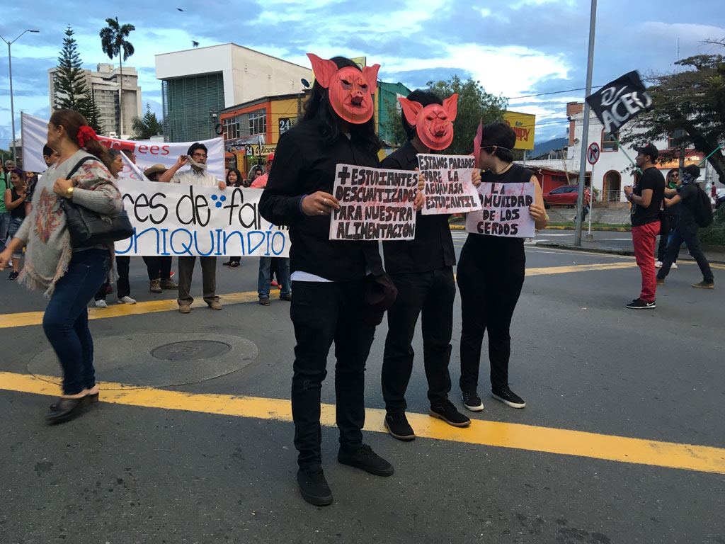 Con marcha 'zombie' en Armenia, estudiantes pidieron más recursos para educación pública