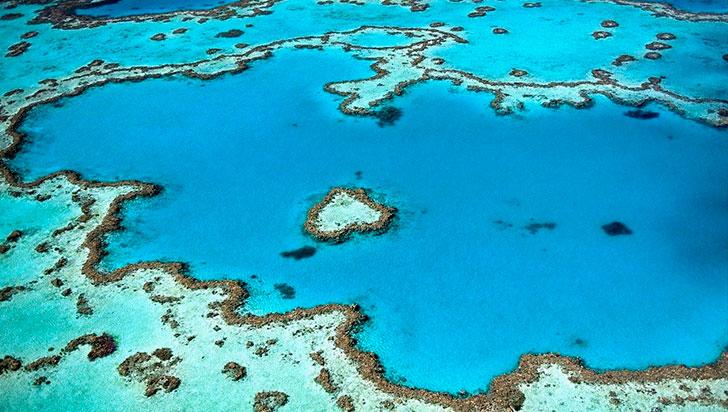 El impacto del desarrollo en los arrecifes es tan devastador como un vertido