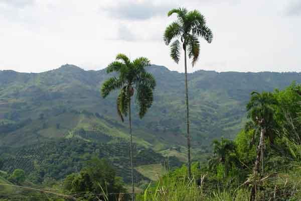 70 propuestas en el concurso de periodismo ambiental