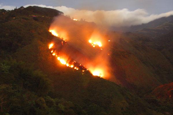 Incendio forestal en el sector de los chorros de Calarcá