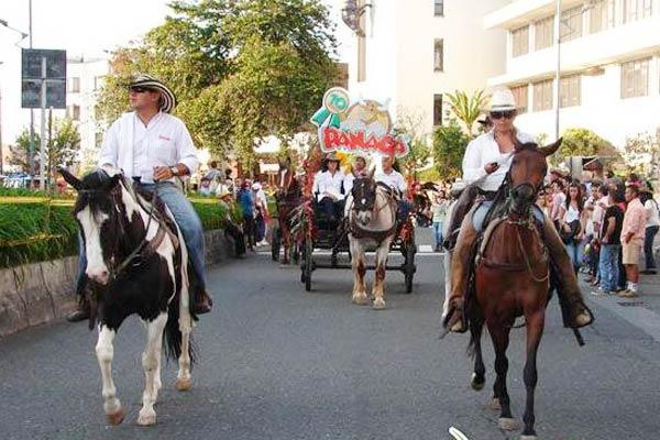Panaca llevó sus mejores equinos a la Feria de Manizalez