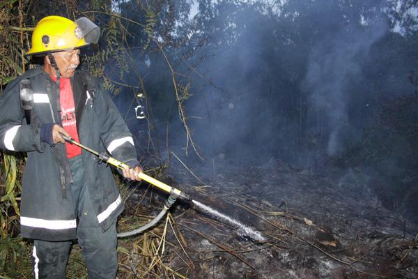 Según la comunidad, bomberos Salento llegó 45 minutos después de iniciada la emergencia. Bomberos Armenia los apoyó.
