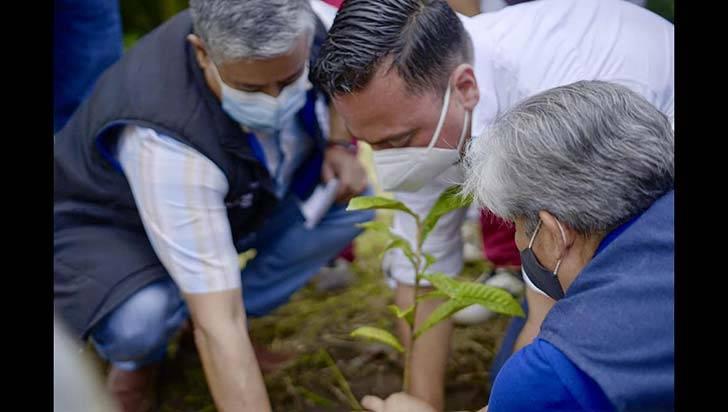 En los municipios quindianos plantaron 240 árboles durante sembratón nacional