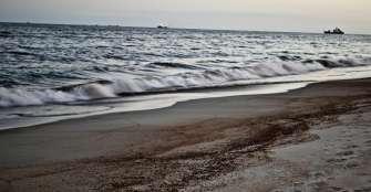 Manchas de petróleo superan 1.000 playas en litoral brasileño desde agosto