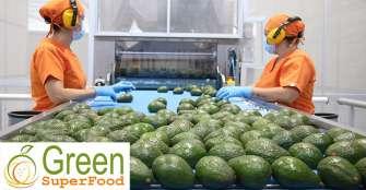 Green SuperFood le apuesta también al limón tahití, maracuyá y papaya