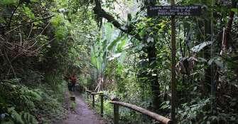 Buscan proteger patrimonio natural con proyecto de turismo comunitario