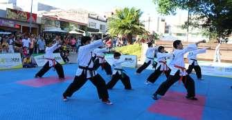 Hapkido quindiano pide mejores pisos para entrenar de cara a los juegos nacionales