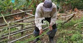 """""""Sector agrícola debe ser motor de la economía; necesitamos compromisos y recursos"""""""
