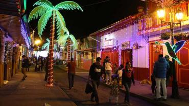 Edeqdispuso de $710 millones para iluminar el Quindío esta Navidad