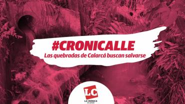 #Cronicalle | Las quebradas de Calarcá buscan salvarse