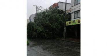 4-municipios-tuvieron-afectacion-en-el-servicio-de-energia-por-las-fuertes-lluvias