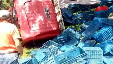 Sin lesionados aparatoso accidente de tránsito el sábado en la vía Armenia a El Caimo