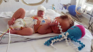 Pulpos amigables regresó para  beneficiar a los bebés prematuros