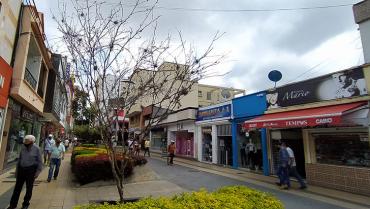 A algunos comerciantes de la peatonal de la 14 los árboles les estorban