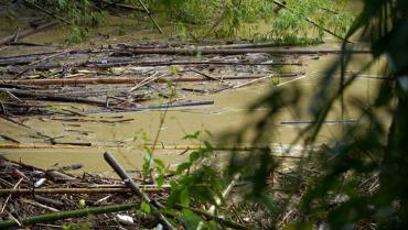 Río De la Vieja, caudal que inspira mortal confianza