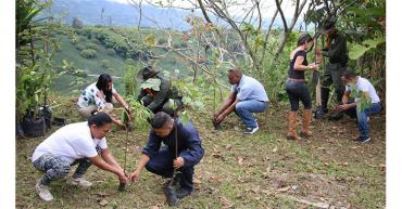 Basura cero y siembra de árboles, apuestas ambientales de la CCAQ
