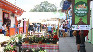Mercados campesinos en 6 municipios ¡A comprarle a los productores locales!