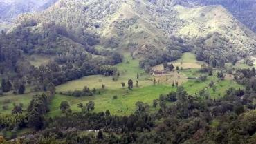 Acuerdo de Escazú, la herramienta jurídica para proteger la naturaleza